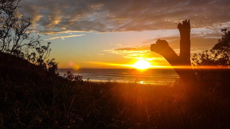 Darb moreton sunrise